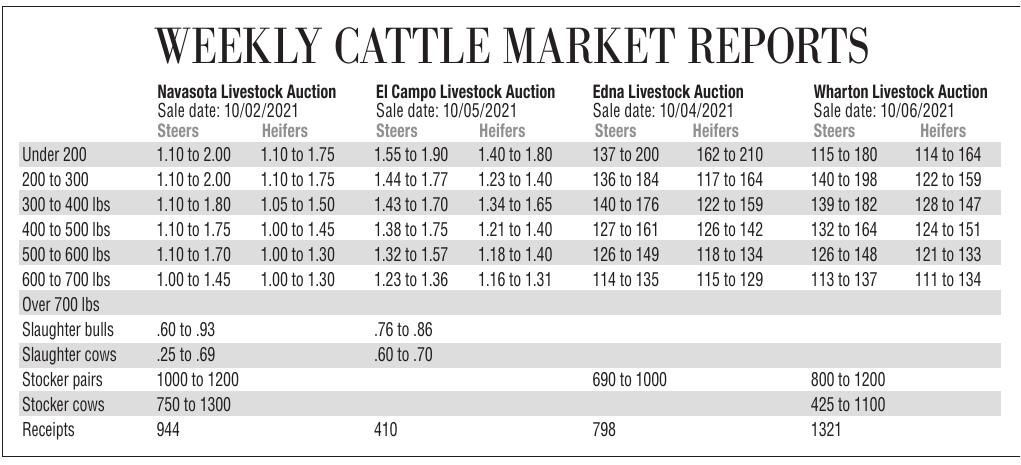 Cattle Chart for Oct. 9, 2021