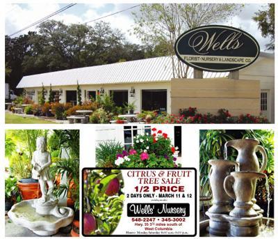 Wells Florist Nursery And Landscape Company Focus