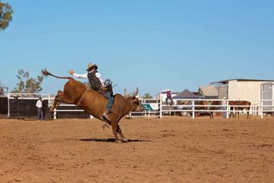 Cowboy Competing In A Bull Riding Event At A Country Rodeo