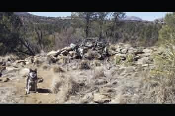 Lynx Creek Ruin site