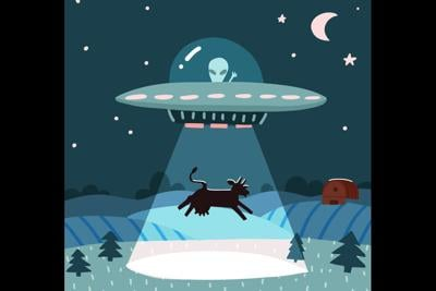 UFO with alien abducting a cow, summer night farm landscape with the night field with house. Flat vector illustration with stars and moon in the sky. Cartoon style