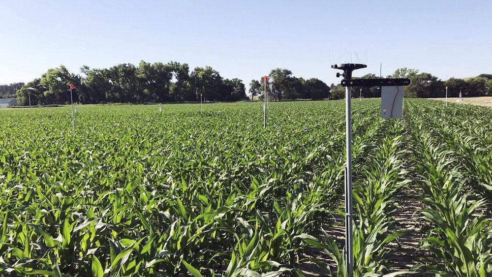 Researchers to tackle irrigation decision-making via USDA grant - Grand Island Independent