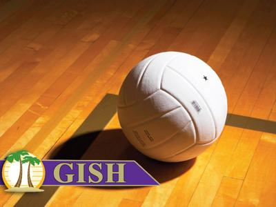 volleyball-GISH.jpg