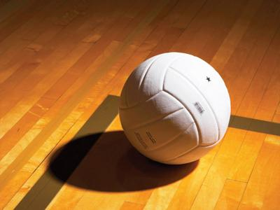 FILE PHOTO: Volleyball