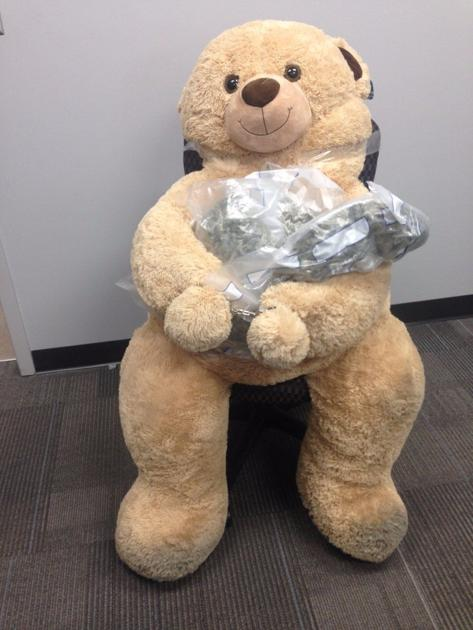 4 Foot Teddy Bear Stuffed With 4 Pounds Of Pot Found In Car West Of