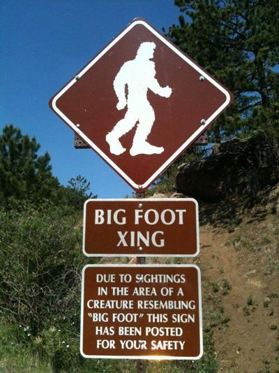 FILE PHOTO: Bigfoot Xing