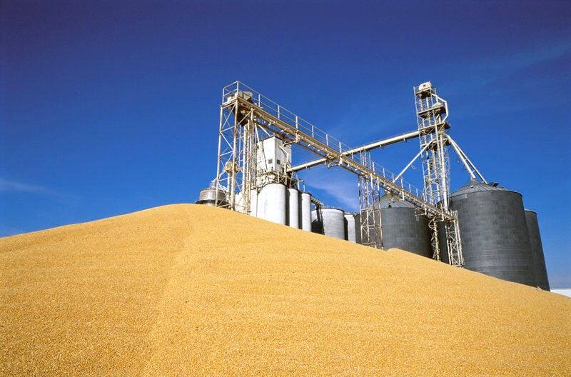 Ag_Grain_exports