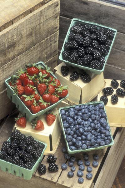 NB_Berries_assorted
