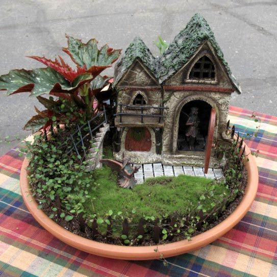 In The Garden: Fairy Gardens Delight With Dwarf Plants ...
