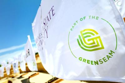 GreenSeam 1