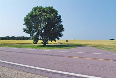 backroads brighton