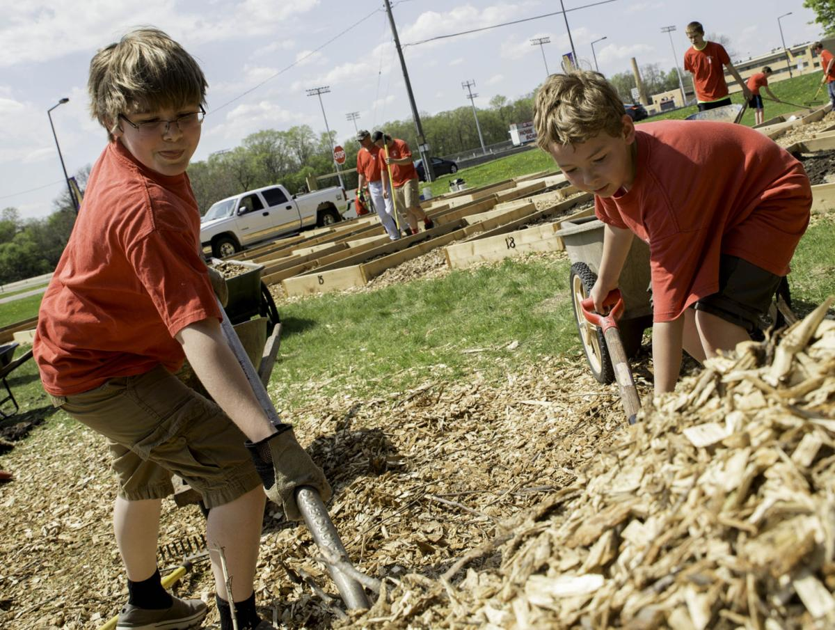 Boy Scouts help out at community garden