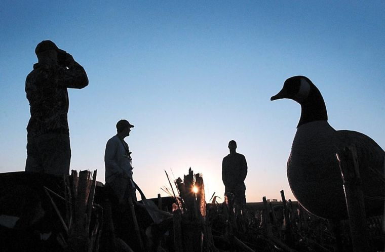 The Outdoors: Hunting 'feathered rats' — Early Canada goose season opens