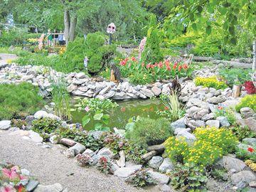 dykstra gardens