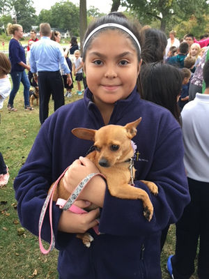 Queen of All Saints to hold pet blessing