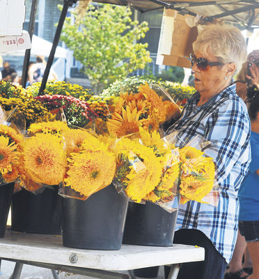 Annual Sunflower Fair returns to La Porte