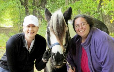 Reins of Life to welcome new therapeutic horse