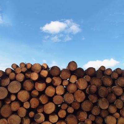 LogsStacked.tif