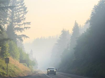 Wildfire in Tillamook State Forest