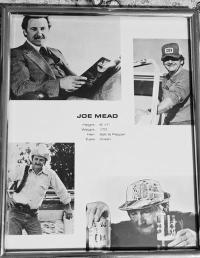 Joe Carrol Mead