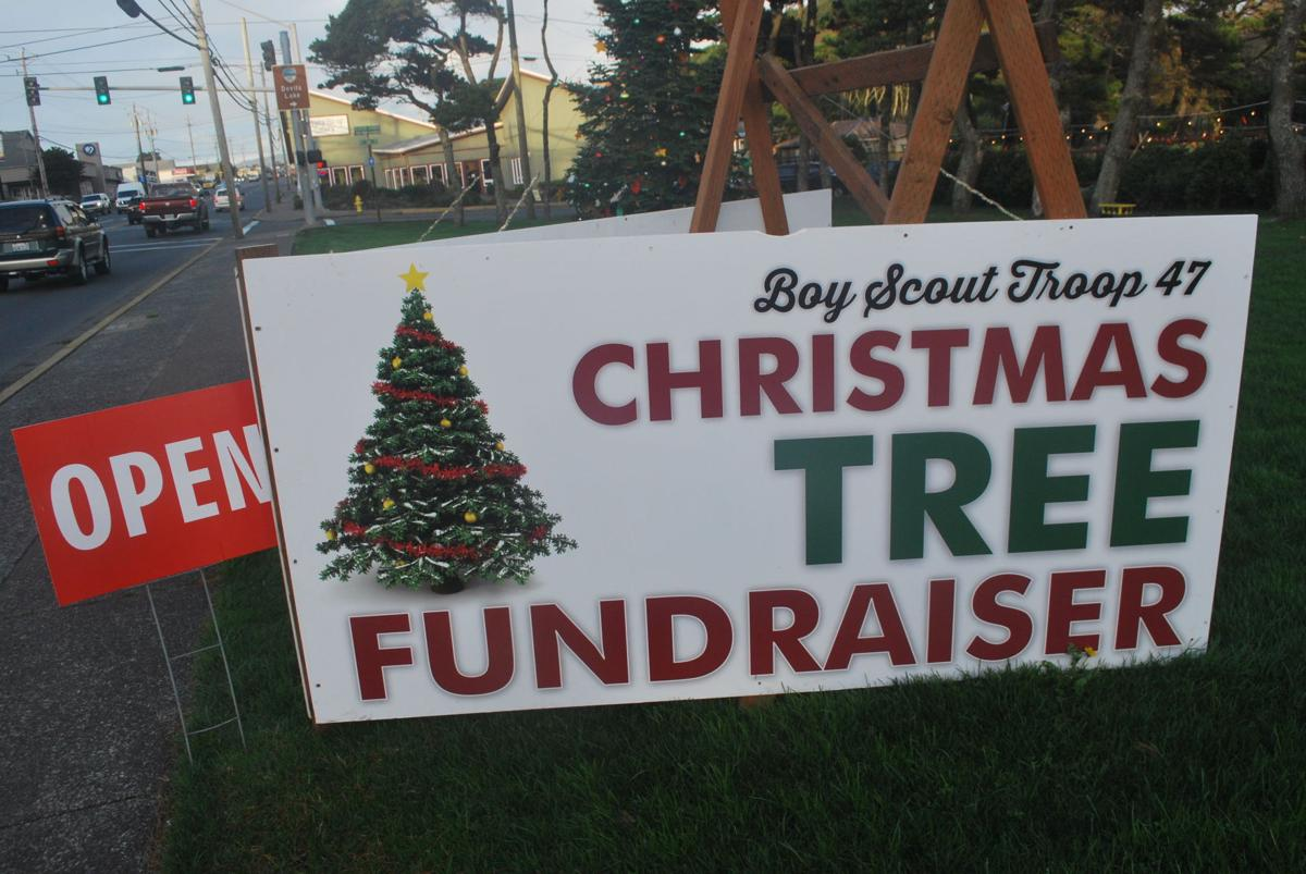 Christmas Trees For Sale.Christmas Local Scouts Mount Holiday Tree Sales Community