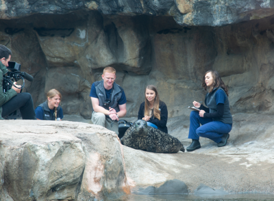 Brittany Blades, Dr. Dan Lewer, Bindi Irwin work with Boots the Harbor Seal - 2.png