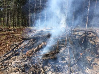 Burning_slash_pileSweet_Home_Fire_School_2019_(49).JPG