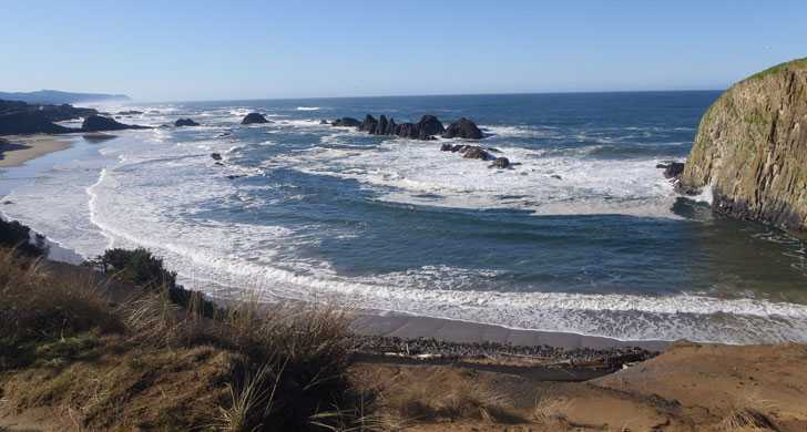 Health Advisory Issued For Seal Rock