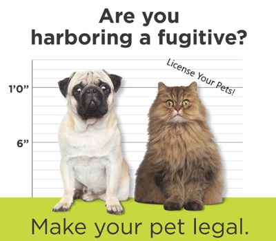 License_Your_Pets.PNG