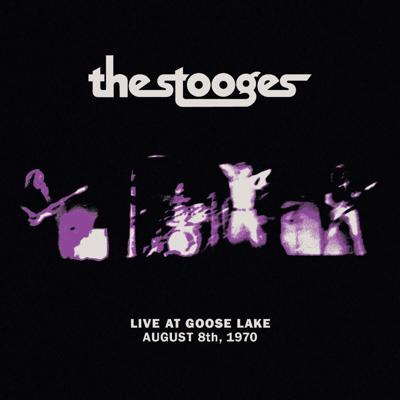 Stooges at Goose Lake cover