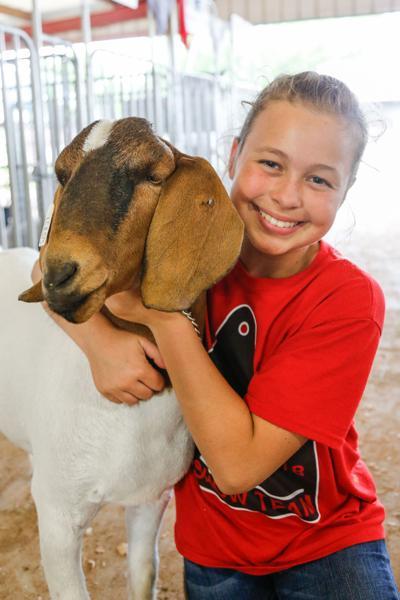 Lamar County Junior Livestock Show 19-5.jpg