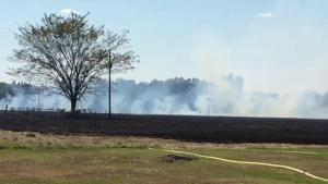 More than 35 acres were lost during Monday's fire in Blossom