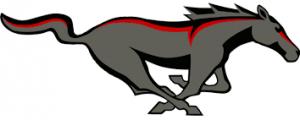 Chisum ISD logo