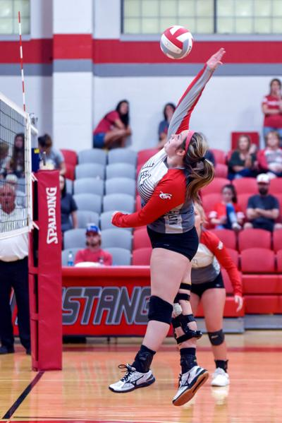 Chisum High School volleyball