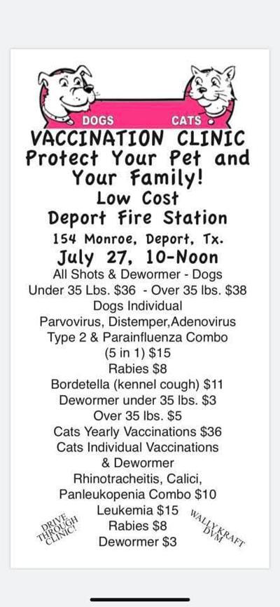 Deport vet clinic flyer