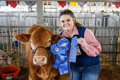 Lamar County Junior Livestock Show Heifer-Ag Mechanics-2.jpg