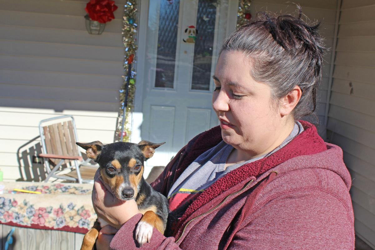 Looking for Fur-ever: Lamar County animal shelters still ...