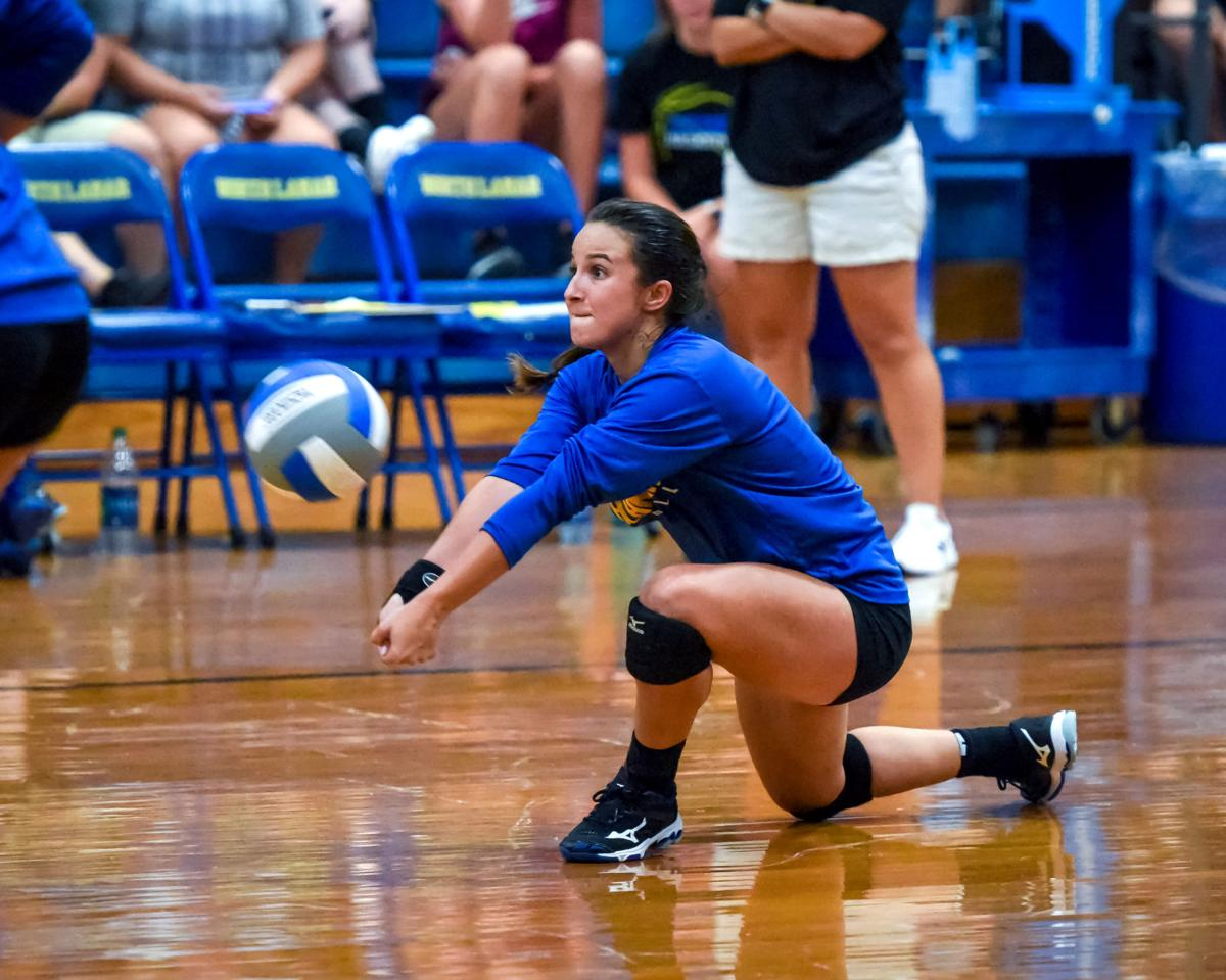 North Lamar volleyball scrimmage day