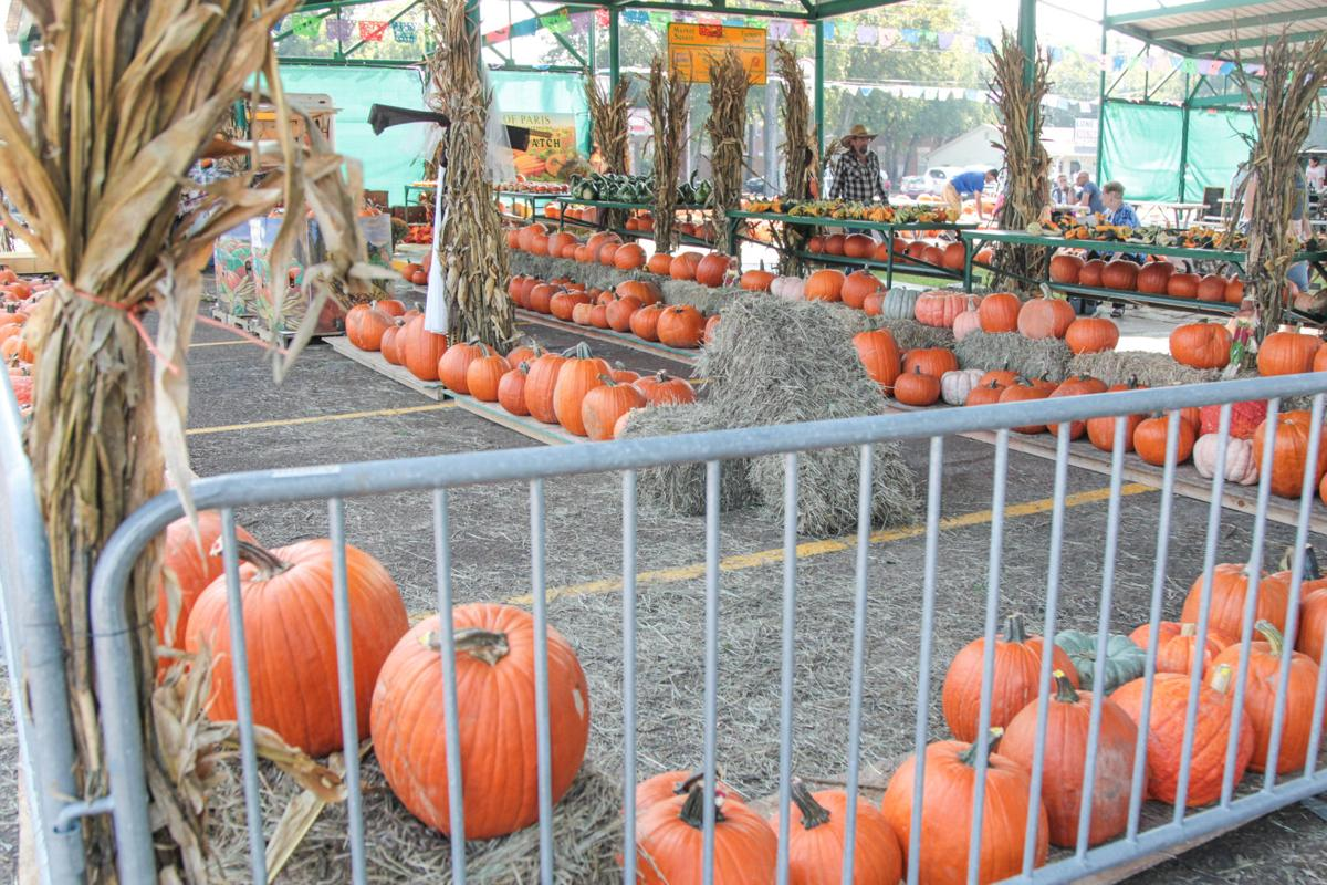 Pumpkin Patch at Farmers Market-1.jpg