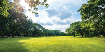 Pamplin Park