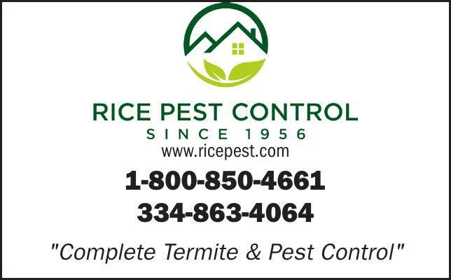www.ricepest.com
