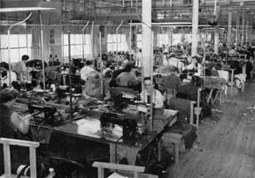 Palm Beach employees at work