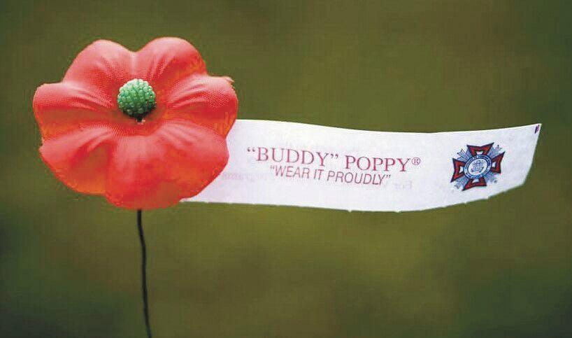 buddy poppy.jpg