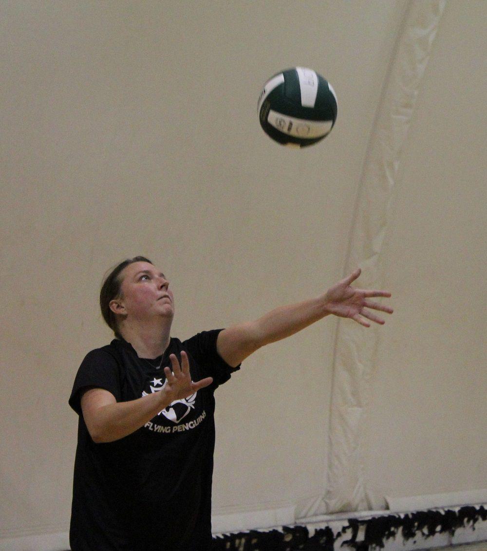 ASSISTS rebounds 2 lady serves.jpg