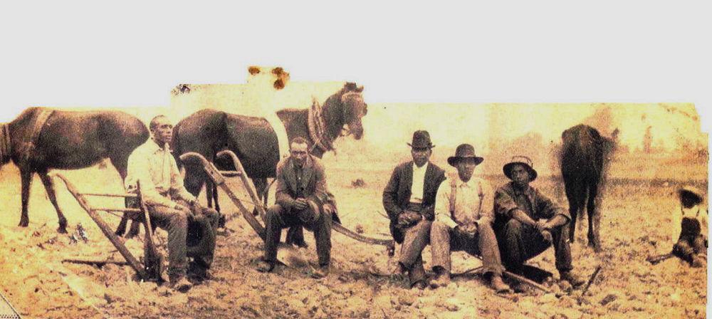 Archaeologist 1 trustees in field.jpg