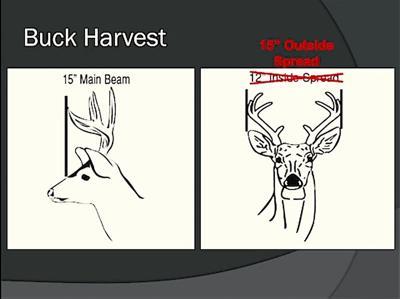 Hunter orientation.jpg