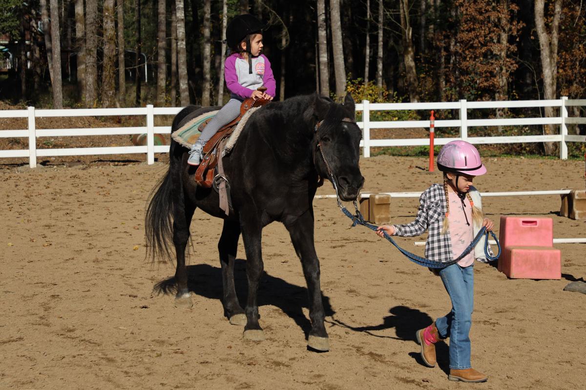 Grace Therapeutic Horse Farm #1