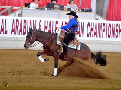 171206.life.horse.coming back a winner.jpeg