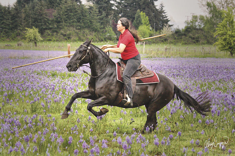 South ridge farms to host working equitation event horse corral one of the trainers involved with an invitation only private seminar during the march working equitation event at south ridge farms julie alonzo stopboris Choice Image