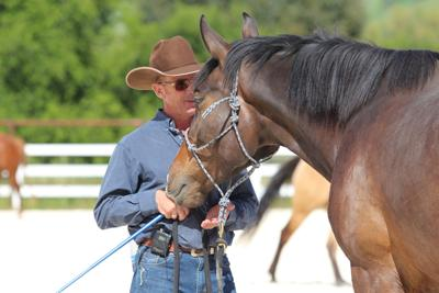 Warwick Schiller to headline Washington State Horse Expo
